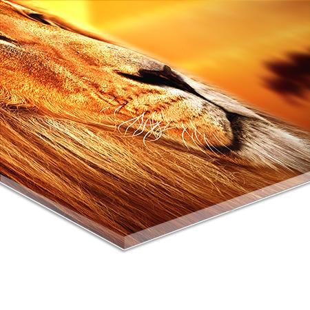 acrylglas-xt-nav