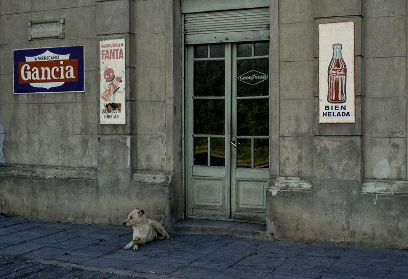 sabina-tuscany-motiv-02